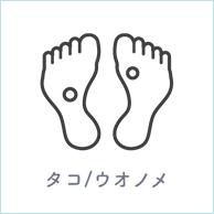 タコ/ウオノメ